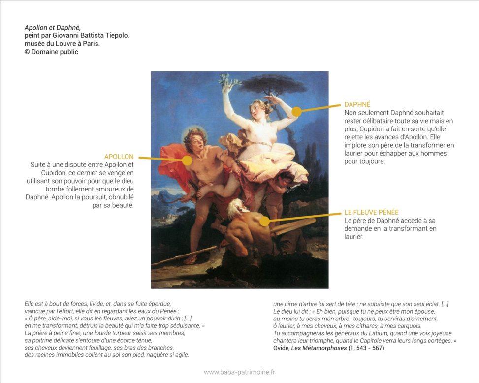 Tableau d'Apollon et Daphné, peint par Giovanni Battista Tiepolo, musée du Louvre à Paris. Pour illustrer le symbole du laurier.